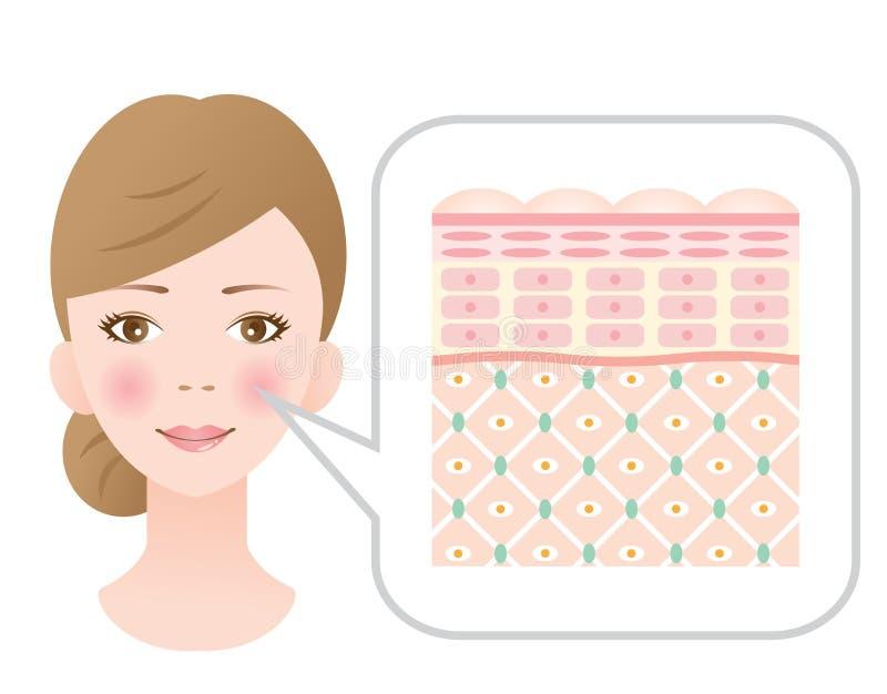 Vrouw met gezonde huid royalty-vrije illustratie