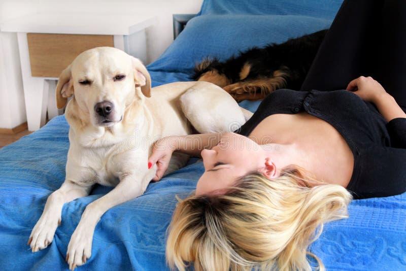 Vrouw met haar hond in bed die thuis, in slaapkamer ontspannen Het mooie meisje speelt, samen en petting met hond in bed stock foto