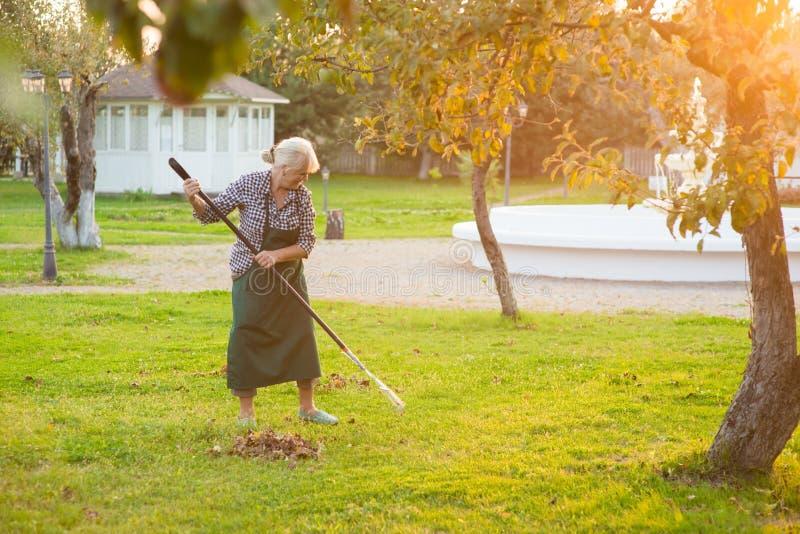 Vrouw met hark in tuin royalty-vrije stock afbeelding