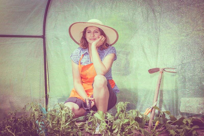 Vrouw met het tuinieren hulpmiddel die in serre werken royalty-vrije stock foto