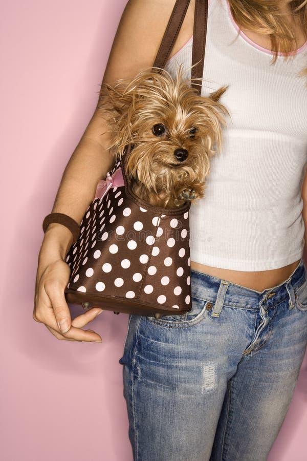 Vrouw met hond in zak. royalty-vrije stock afbeeldingen