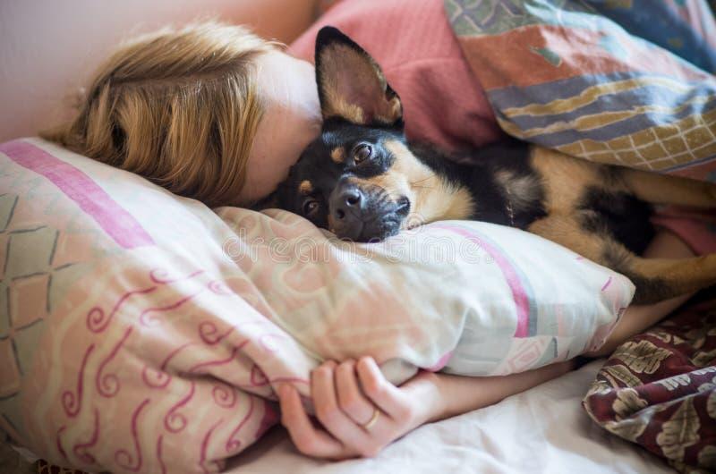 Vrouw met hondslaap in het bed royalty-vrije stock afbeeldingen