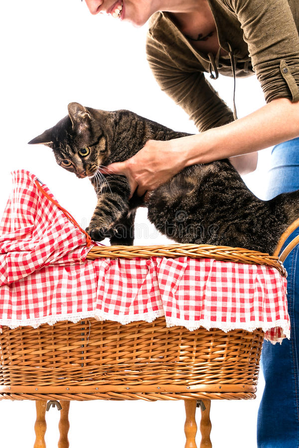 Vrouw met kat en met fouten royalty-vrije stock afbeeldingen