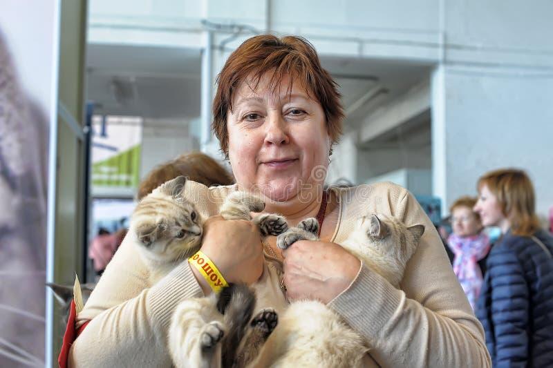 Vrouw met katjes royalty-vrije stock afbeelding