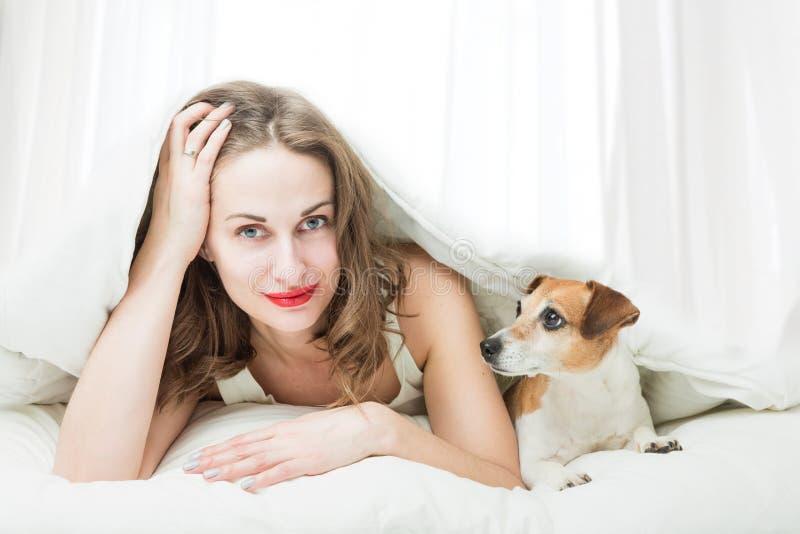Vrouw met kleine huisdierenhond in bed stock foto's