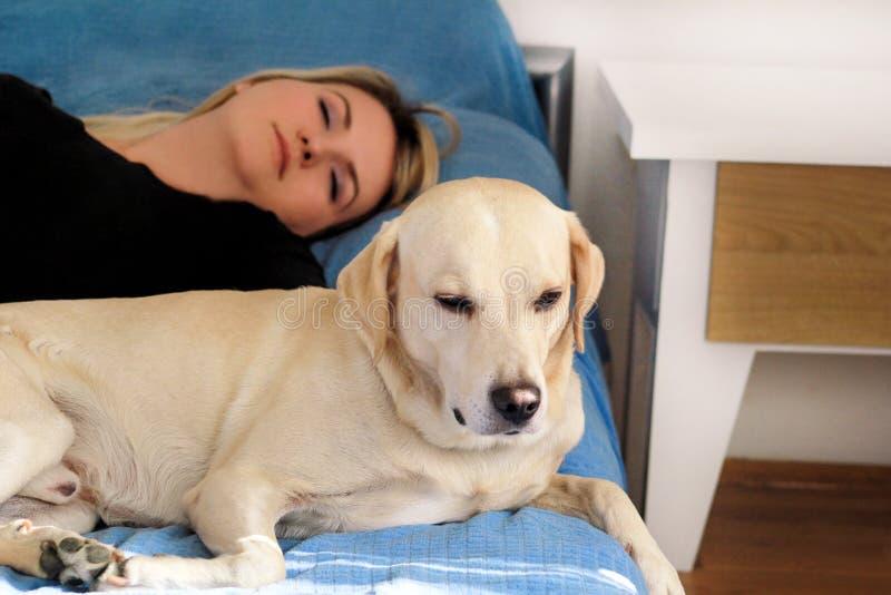 Vrouw met leuke honden thuis Knap meisje die en met haar hond in bed in slaapkamer rusten slapen Eigenaar en hondslaap in bank royalty-vrije stock afbeelding