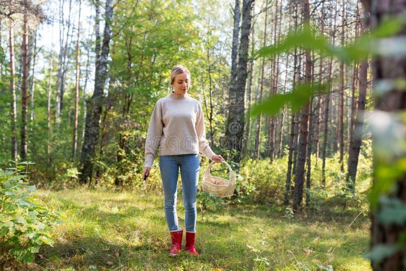 Vrouw met mand het plukken paddestoelen in bos royalty-vrije stock foto's
