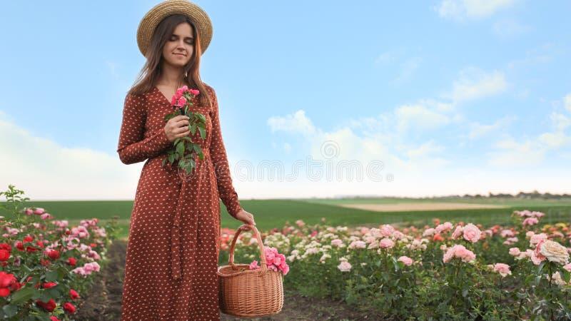Vrouw met mand van rozen in het mooie bloeien stock fotografie