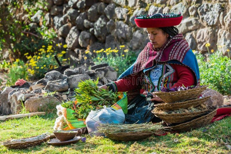 Vrouw met nural kleurstoffen de Peruviaanse Andes Cuzco Peru royalty-vrije stock afbeelding