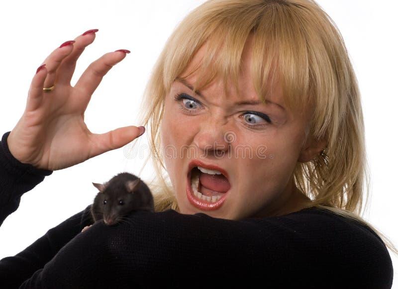 Vrouw met rat stock foto