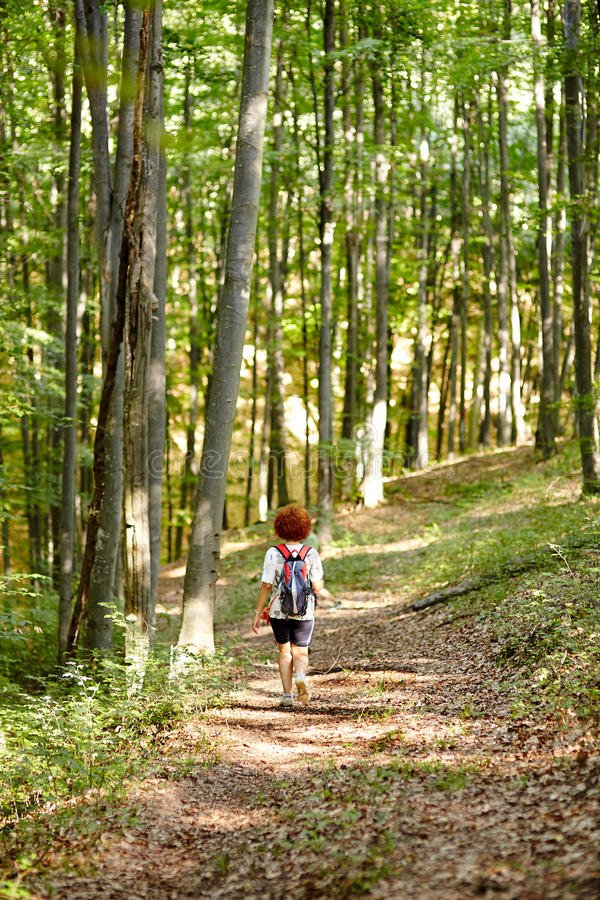Vrouw met rugzak in het bos stock afbeeldingen