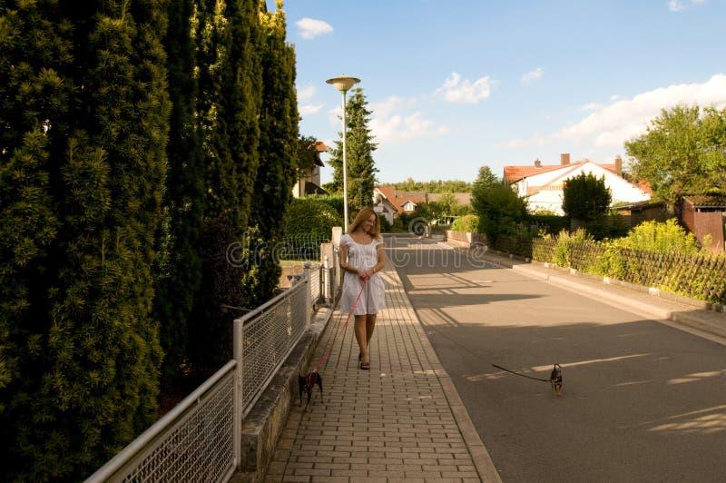 Vrouw met twee honden. royalty-vrije stock afbeelding