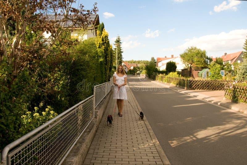 Vrouw met twee honden. stock afbeeldingen