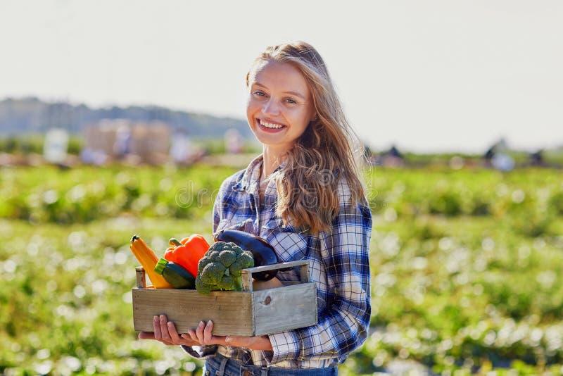 Vrouw met verse organische groenten van landbouwbedrijf stock fotografie