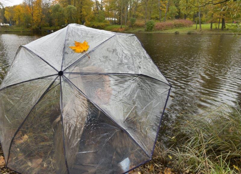 Vrouw onder een transparante paraplu op een bewolkte de herfstdag op de meerkust royalty-vrije stock foto