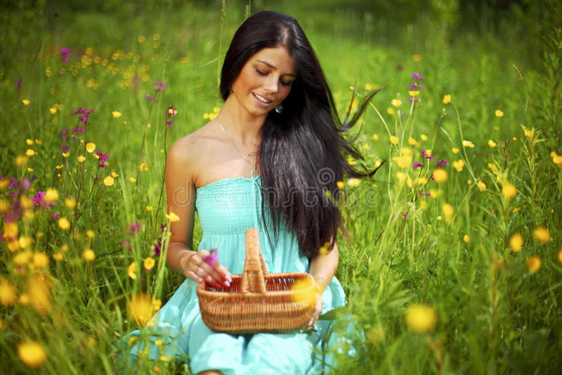 Vrouw op bloemgebied royalty-vrije stock fotografie
