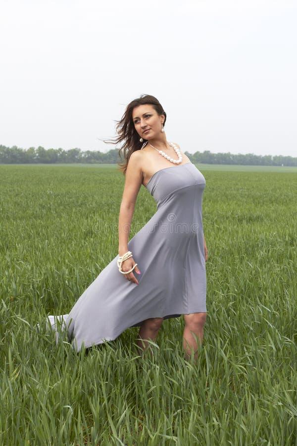 Vrouw op het gebied stock afbeeldingen