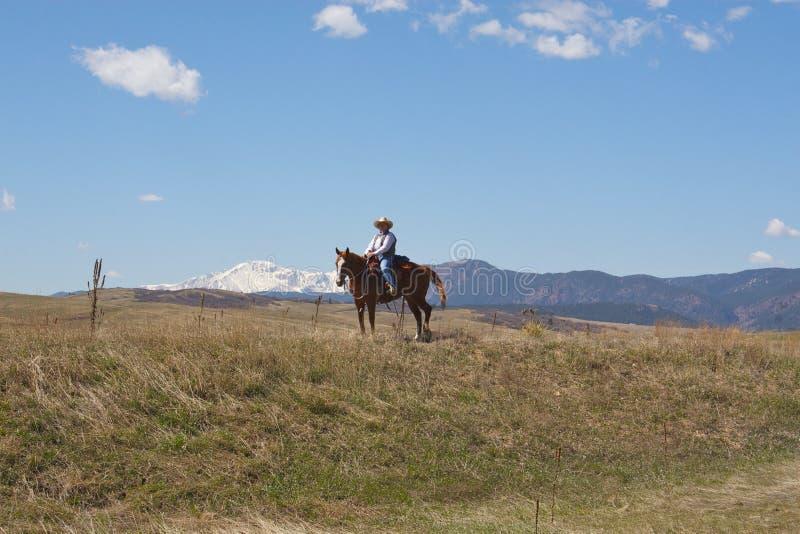Vrouw op horseback stock foto's