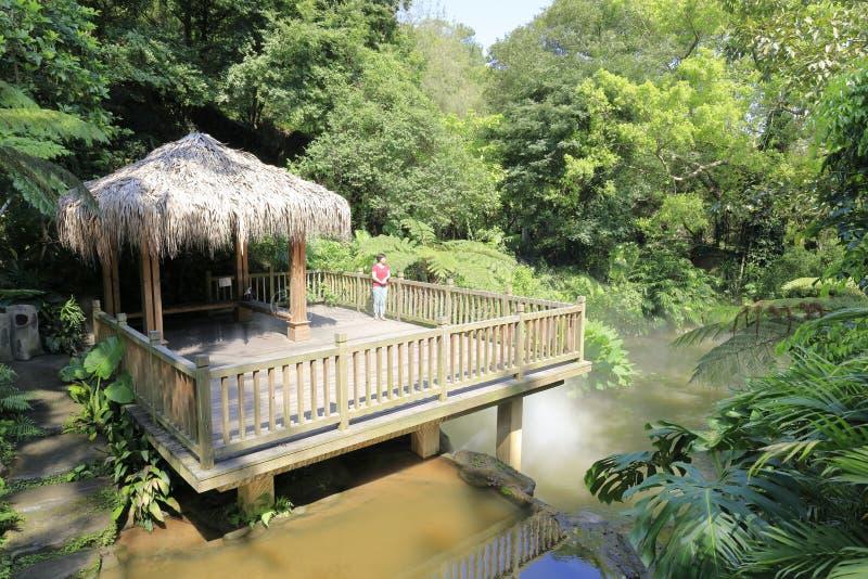 Vrouw op houten paviljoen in regenwoud, rgb adobe royalty-vrije stock foto
