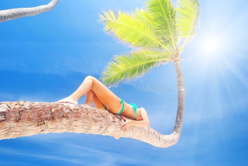 Vrouw op palm stock fotografie