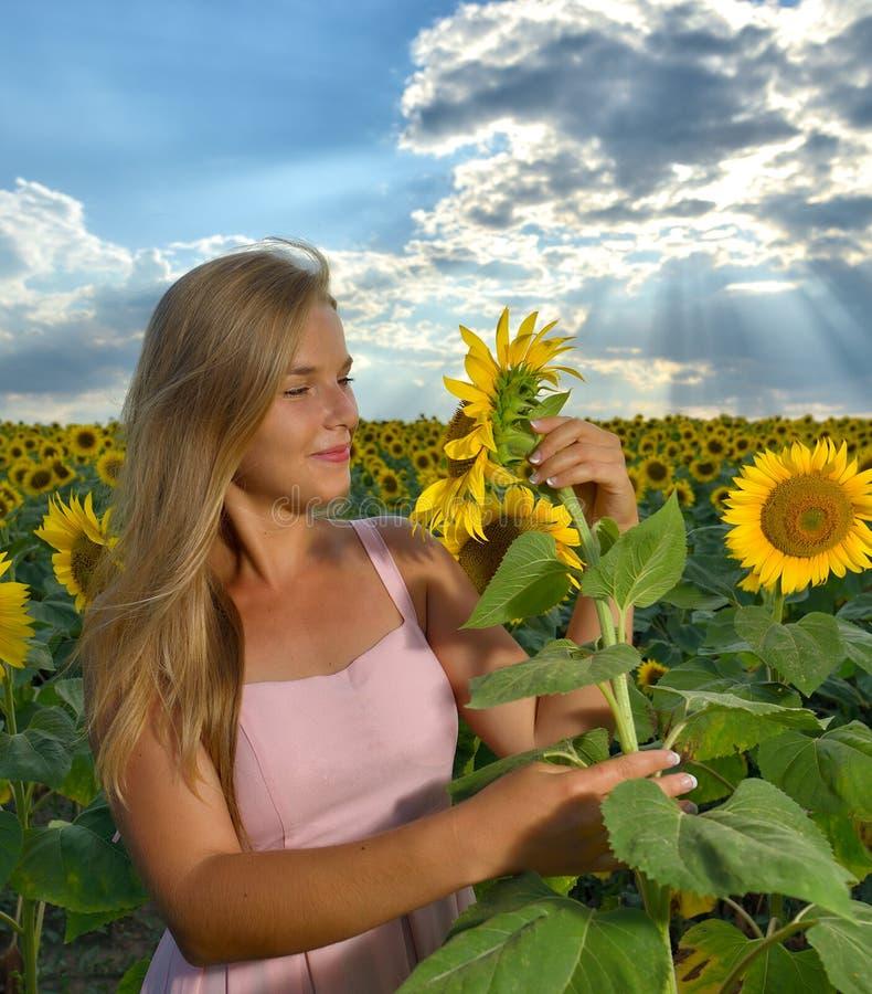 Vrouw op zonnebloemgebied in zonsondergangtijd royalty-vrije stock afbeeldingen
