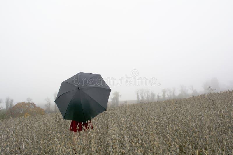 Vrouw in rode kleding met zwarte paraplu tegen een ochtend mistig s stock foto's