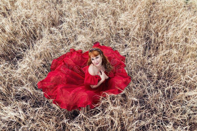 Vrouw in rode kledingszitting op een gerstgebied stock afbeeldingen