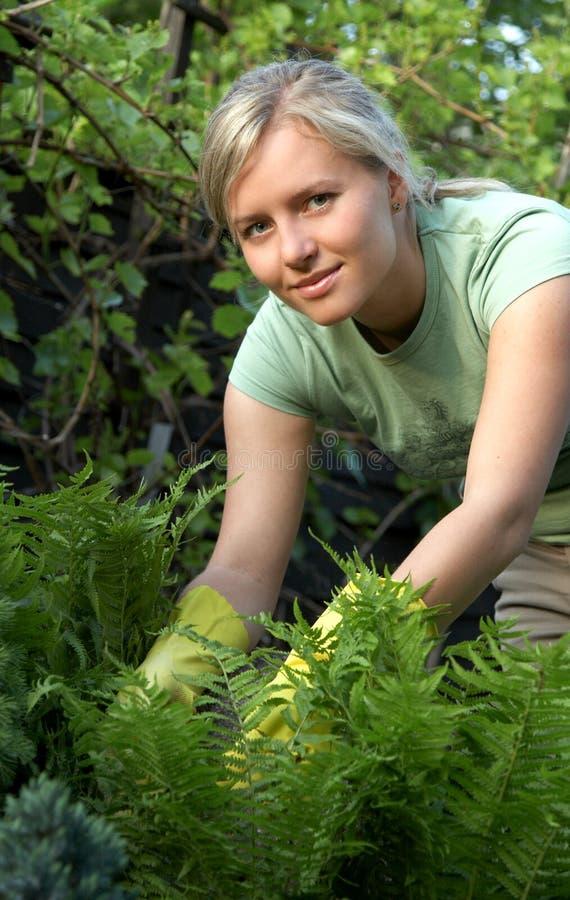 Vrouw in tuin stock foto