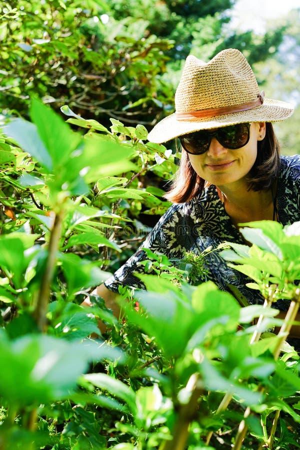 Vrouw in tuin royalty-vrije stock afbeelding