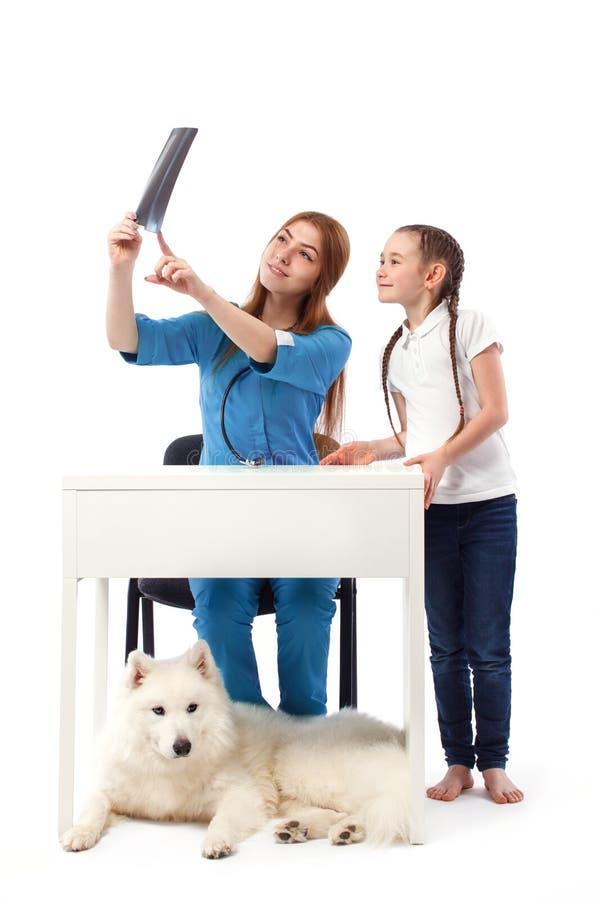Vrouw veterinaire arts die een röntgenstraal van een hond tonen aan meisje Geneeskunde en gezondheidszorgconcept royalty-vrije stock afbeeldingen