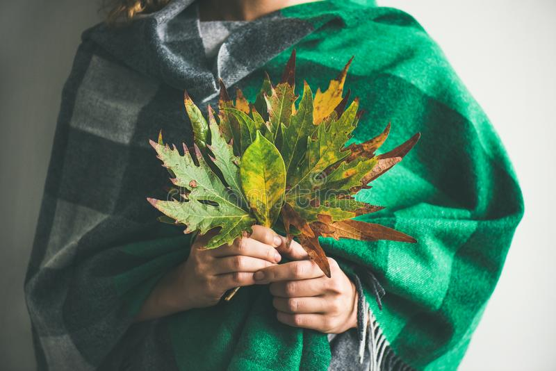 Vrouw in warme de Herfstbladeren van de sjaalholding stock foto's
