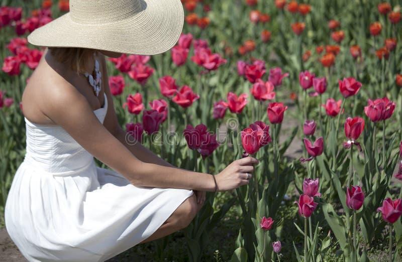 Vrouw in witte kleding in Tulip Field royalty-vrije stock foto