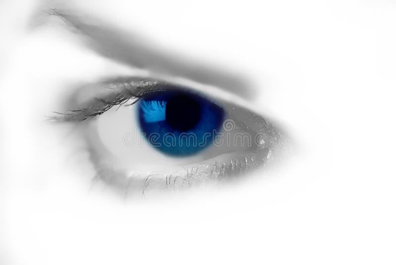 Vrouwelijk blauw oog royalty-vrije stock foto's