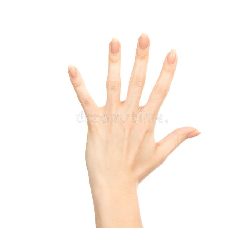 Vrouwelijk de handgebaar nummer vijf van Manicured vingers omhoog stock foto's
