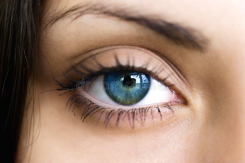 Vrouwelijk donkerblauw oog stock foto's