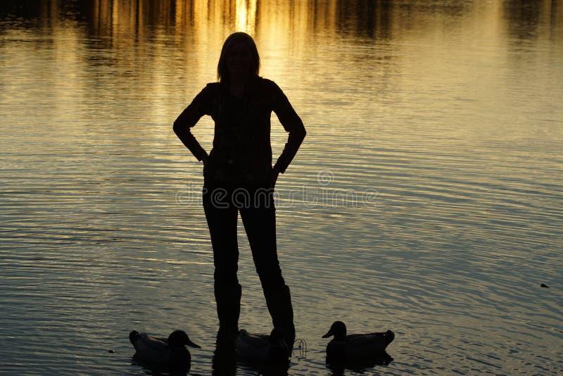 Vrouwelijk Duck Hunter-zonsondergangsilhouet stock foto's