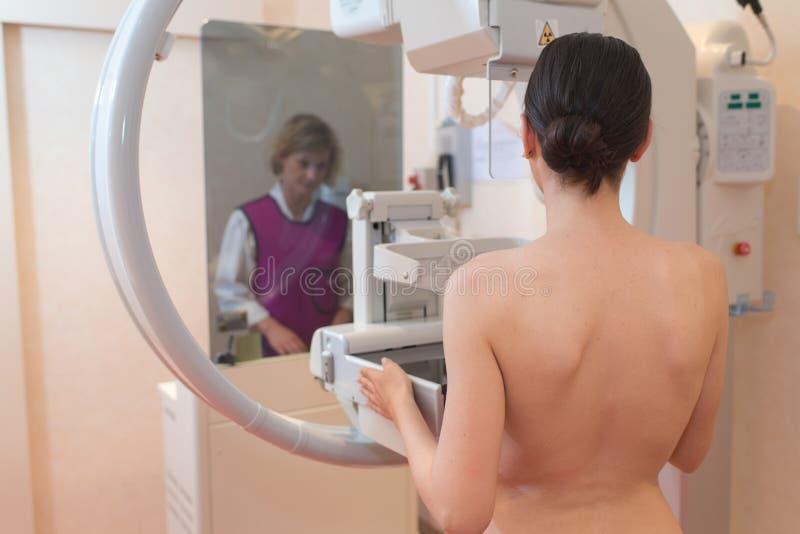 Vrouwelijk geduldig ondergaand mammogram in kliniek stock afbeelding