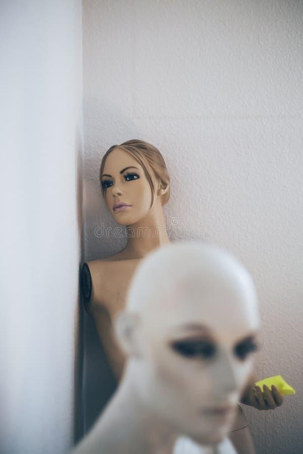 Vrouwelijk Mannequin royalty-vrije stock fotografie