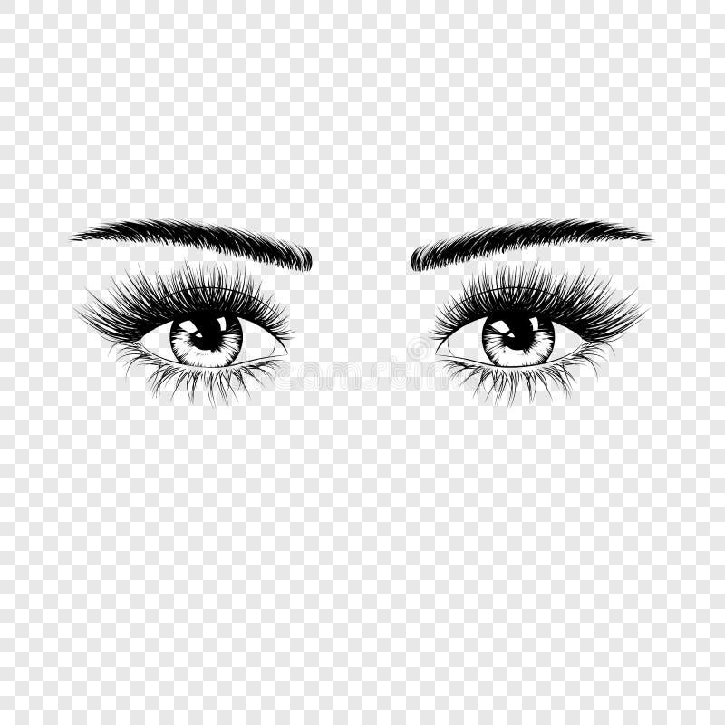 Vrouwelijk ogensilhouet met wimpers en wenkbrauwen Vectordieillustratie op transparante achtergrond wordt geïsoleerd stock illustratie