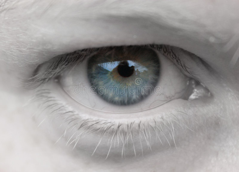 Vrouwelijk oog royalty-vrije stock afbeeldingen