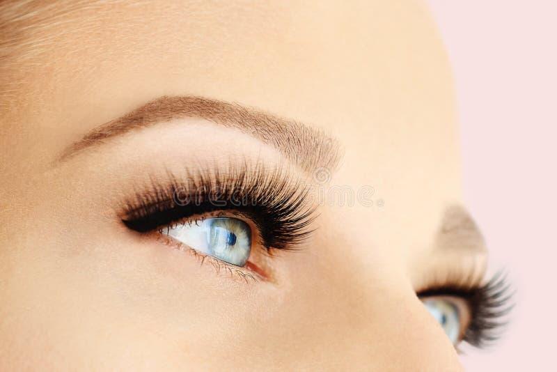 Vrouwelijk oog met extreme lange valse wimpers en zwarte voering Wimperuitbreidingen, samenstelling, schoonheidsmiddelen, schoonh stock foto