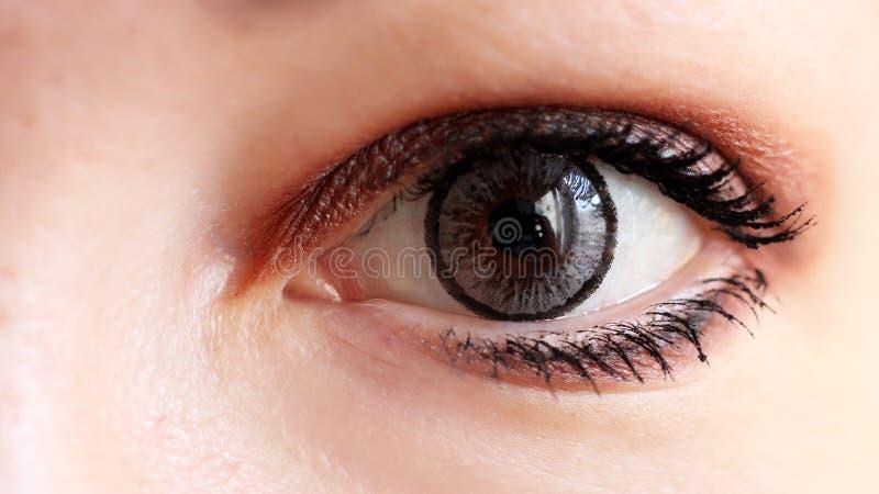 Vrouwelijk oog met grijze zo dicht contactlens stock foto