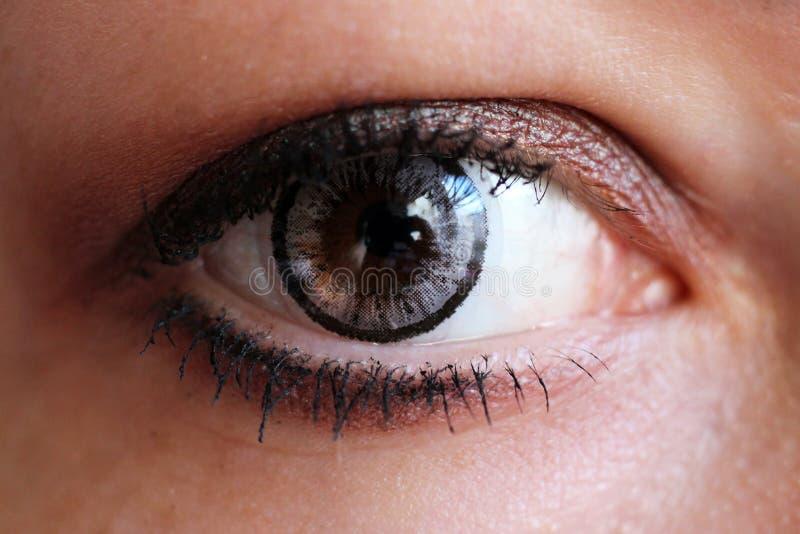 Vrouwelijk oog met grijze zo dicht contactlens stock fotografie