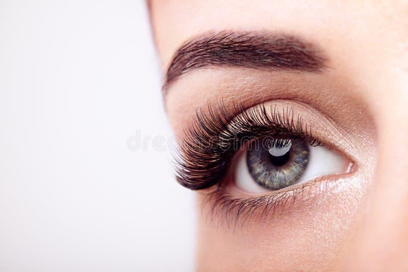 Vrouwelijk oog met lange valse wimpers royalty-vrije stock foto's