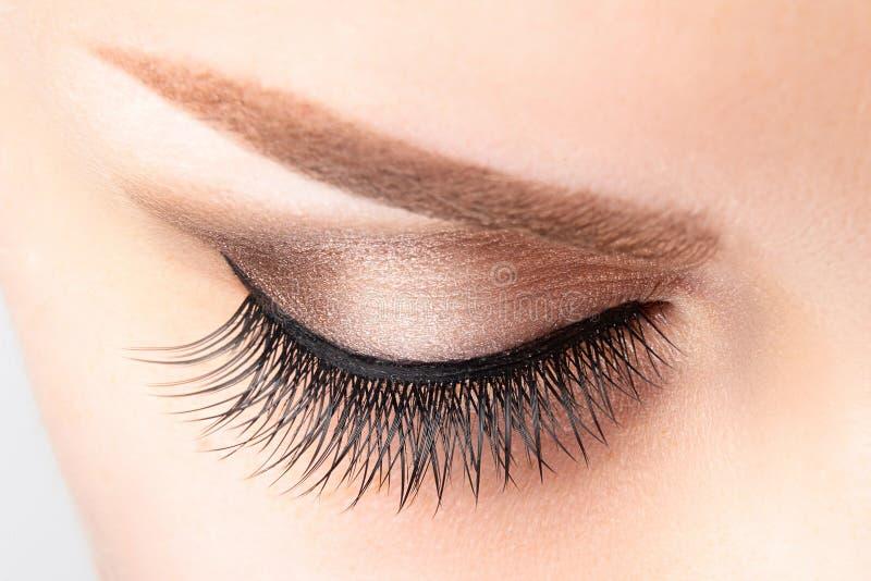 Vrouwelijk oog met lange valse wimpers, mooie make-up en lichtbruine wenkbrauw stock foto