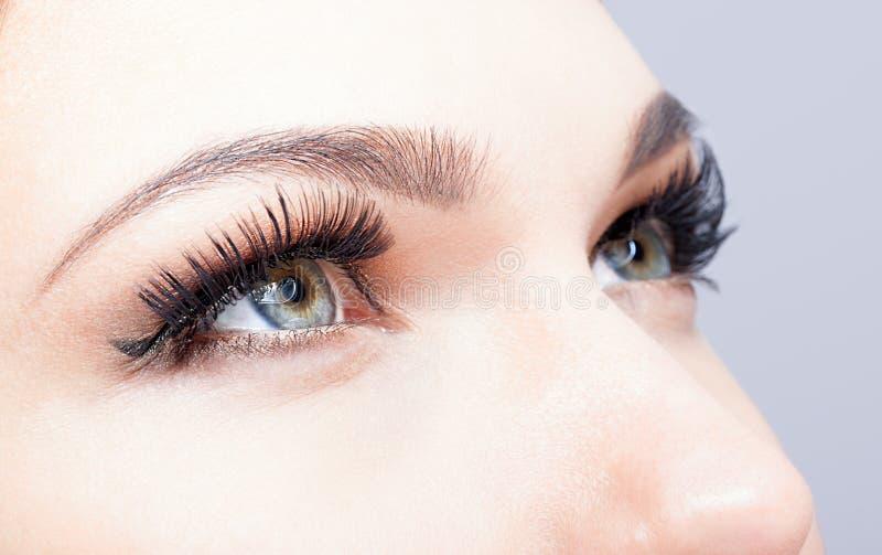 Vrouwelijk oog met lange wimpers stock foto's