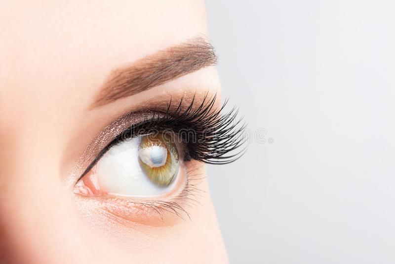 Vrouwelijk oog met lange wimpers, mooie make-up en lichtbruin wenkbrauwclose-up Wimperuitbreidingen, laminering, die microblading stock afbeelding