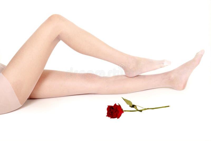 Vrouwelijke benen in witte kousen stock fotografie