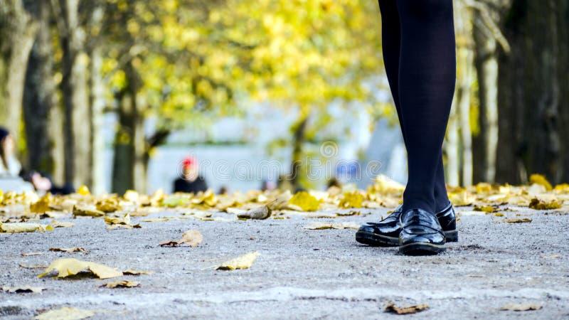 Vrouwelijke benen in zwarte laarzen stock foto