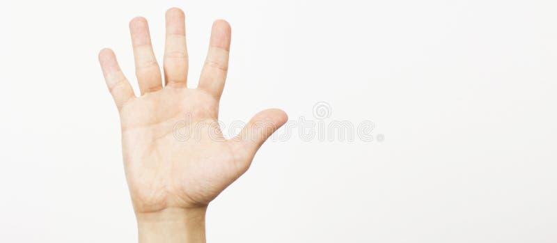 Vrouwelijke die hand in groet wordt uitgebreid op wit wordt ge?soleerd De mannelijke hand die het gebaar met vijf vingers tonen i stock foto's